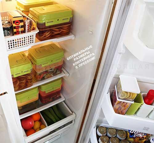 контейнер доля хранения в холодильнике